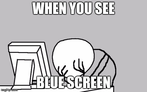 Computer Guy Facepalm Meme | WHEN YOU SEE BLUE SCREEN | image tagged in memes,computer guy facepalm | made w/ Imgflip meme maker