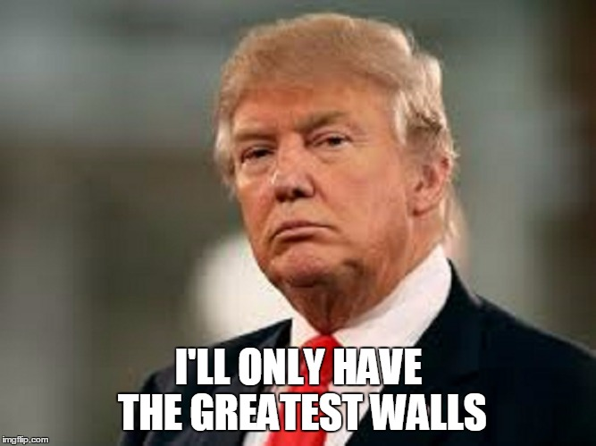 I'LL ONLY HAVE THE GREATEST WALLS | made w/ Imgflip meme maker
