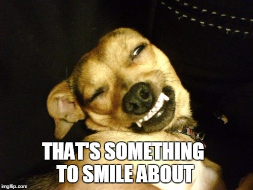 THAT'S SOMETHING TO SMILE ABOUT | made w/ Imgflip meme maker