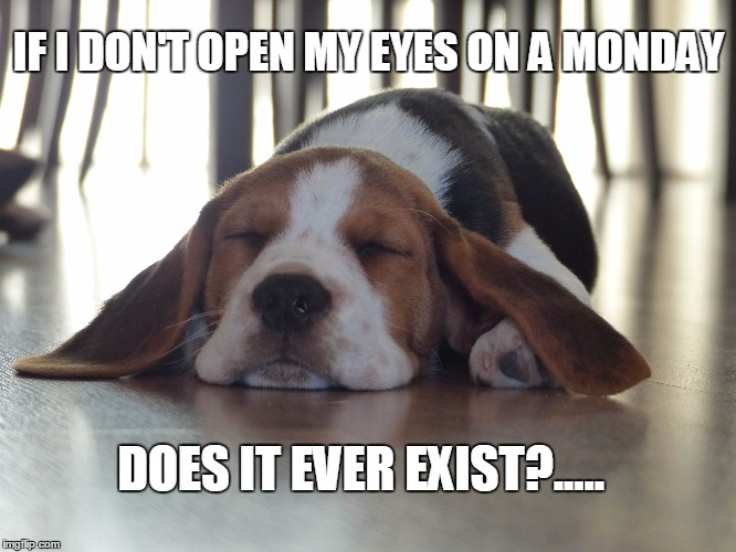 If I don't open my eyes on a Monday, does it ever exist?.... | IF I DON'T OPEN MY EYES ON A MONDAY DOES IT EVER EXIST?..... | image tagged in monday face,monday mornings,me monday morning,monday,mondays | made w/ Imgflip meme maker