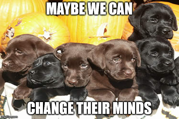MAYBE WE CAN CHANGE THEIR MINDS | made w/ Imgflip meme maker