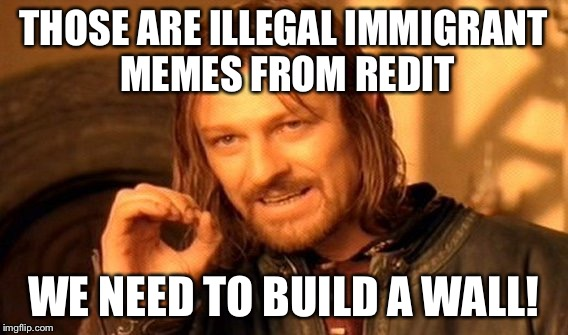 One Does Not Simply Meme | THOSE ARE ILLEGAL IMMIGRANT MEMES FROM REDIT WE NEED TO BUILD A WALL! | image tagged in memes,one does not simply | made w/ Imgflip meme maker
