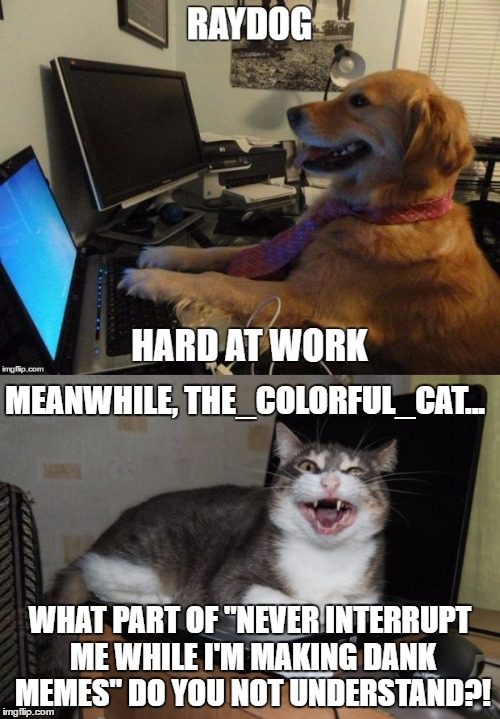"Note: This depiction is entirely accurate. |  MEANWHILE, THE_COLORFUL_CAT... WHAT PART OF ""NEVER INTERRUPT ME WHILE I'M MAKING DANK MEMES"" DO YOU NOT UNDERSTAND?! 