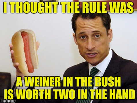 I THOUGHT THE RULE WAS A WEINER IN THE BUSH IS WORTH TWO IN THE HAND | made w/ Imgflip meme maker