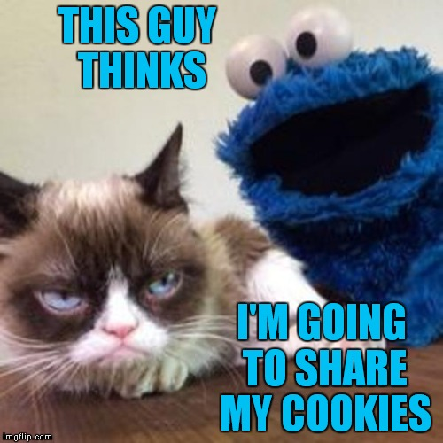 Better go back to Sesame Street Cookie Monster... | THIS GUY THINKS I'M GOING TO SHARE MY COOKIES | image tagged in grumpy cat,grumpy cat not amused,my cookie,cookie monster love story | made w/ Imgflip meme maker