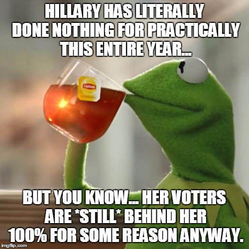 But Thats None Of My Business Meme | HILLARY HAS LITERALLY DONE NOTHING FOR PRACTICALLY THIS ENTIRE YEAR... BUT YOU KNOW... HER VOTERS ARE *STILL* BEHIND HER 100% FOR SOME REASO | image tagged in memes,but thats none of my business,kermit the frog | made w/ Imgflip meme maker
