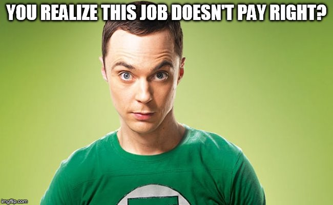 Sheldon - Really | YOU REALIZE THIS JOB DOESN'T PAY RIGHT? | image tagged in sheldon - really | made w/ Imgflip meme maker