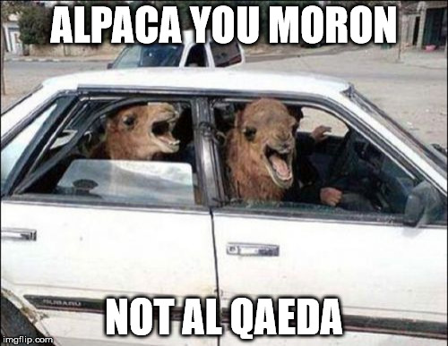Quit Hatin | ALPACA YOU MORON NOT AL QAEDA | image tagged in memes,quit hatin | made w/ Imgflip meme maker