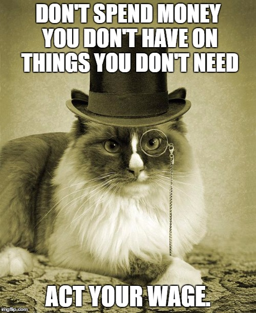 fancy cat  | DON'T SPEND MONEY YOU DON'T HAVE ON THINGS YOU DON'T NEED ACT YOUR WAGE. | image tagged in fancy cat | made w/ Imgflip meme maker