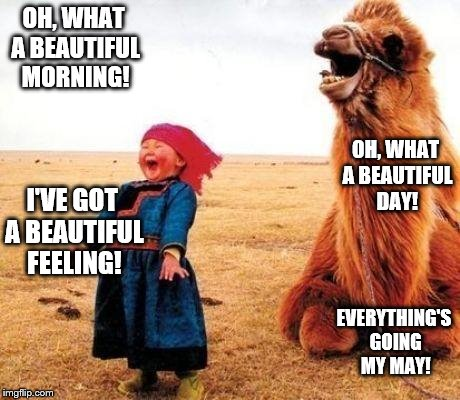 Funny gal |  OH, WHAT A BEAUTIFUL MORNING! OH, WHAT A BEAUTIFUL DAY! I'VE GOT A BEAUTIFUL FEELING! EVERYTHING'S GOING MY MAY! | image tagged in funny gal | made w/ Imgflip meme maker
