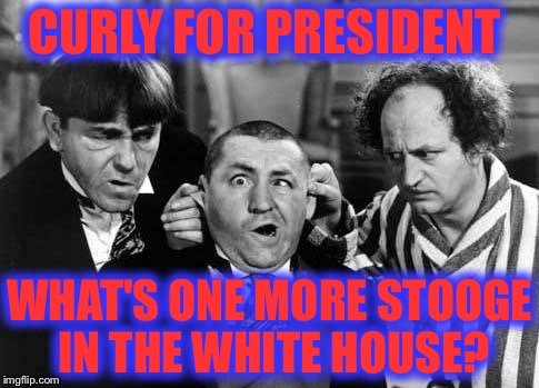 Vote for Curly! | CURLY FOR PRESIDENT WHAT'S ONE MORE STOOGE IN THE WHITE HOUSE? | image tagged in three stooges,memes,funny,election 2016,hillary,trump | made w/ Imgflip meme maker