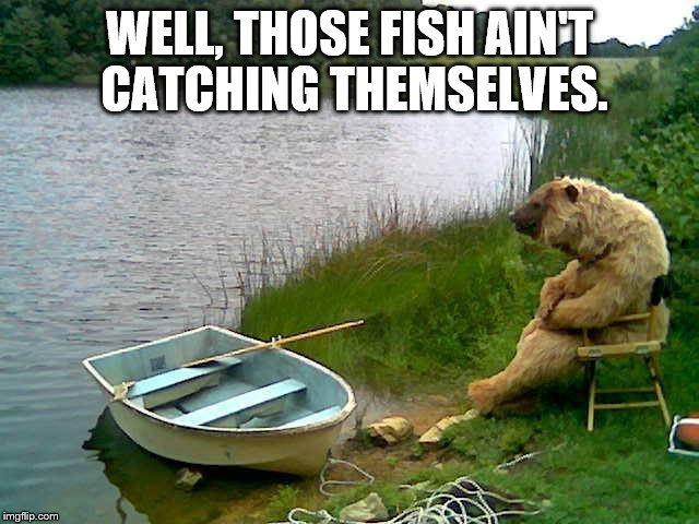 WELL, THOSE FISH AIN'T CATCHING THEMSELVES. | image tagged in funny memes,fishing,bear | made w/ Imgflip meme maker