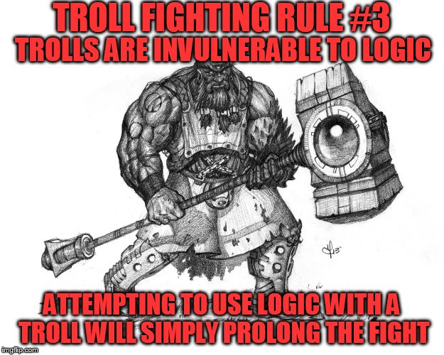 Troll Fighting Rule #3 | TROLL FIGHTING RULE #3 ATTEMPTING TO USE LOGIC WITH A TROLL WILL SIMPLY PROLONG THE FIGHT TROLLS ARE INVULNERABLE TO LOGIC | image tagged in troll smasher | made w/ Imgflip meme maker
