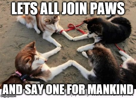 LETS ALL JOIN PAWS AND SAY ONE FOR MANKIND | made w/ Imgflip meme maker