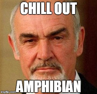 connery | CHILL OUT AMPHIBIAN | image tagged in connery | made w/ Imgflip meme maker