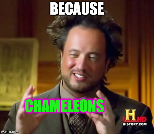 Ancient Aliens Meme | BECAUSE CHAMELEONS | image tagged in memes,ancient aliens | made w/ Imgflip meme maker