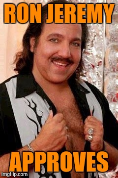 RON JEREMY APPROVES | made w/ Imgflip meme maker