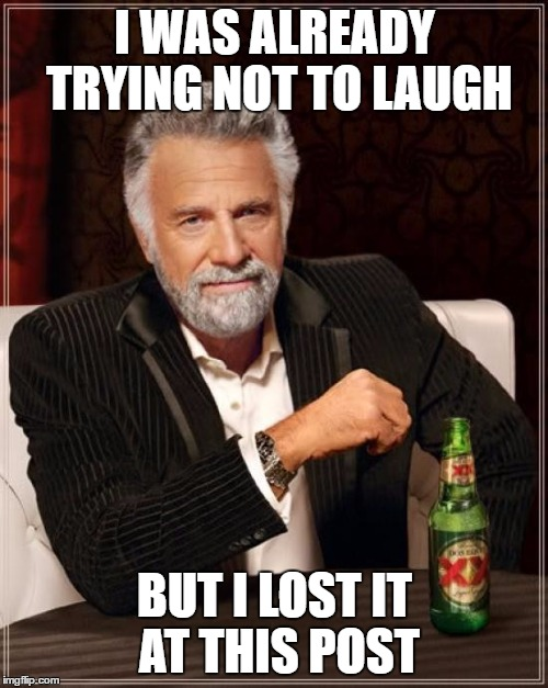 The Most Interesting Man In The World Meme | I WAS ALREADY TRYING NOT TO LAUGH BUT I LOST IT AT THIS POST | image tagged in memes,the most interesting man in the world | made w/ Imgflip meme maker