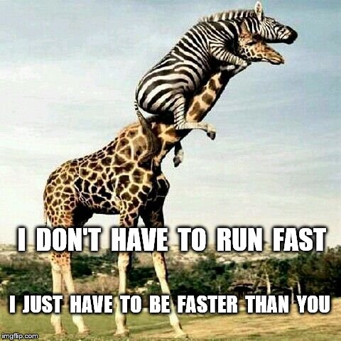 I  DON'T  HAVE  TO  RUN  FAST I  JUST  HAVE  TO  BE  FASTER  THAN  YOU | made w/ Imgflip meme maker