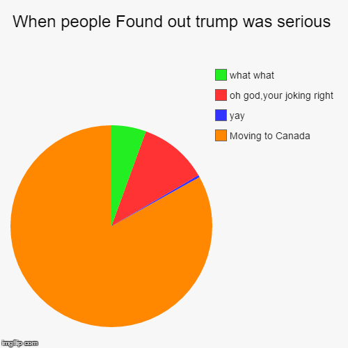 When people Found out trump was serious | Moving to Canada, yay, oh god,your joking right, what what | image tagged in funny,pie charts | made w/ Imgflip chart maker