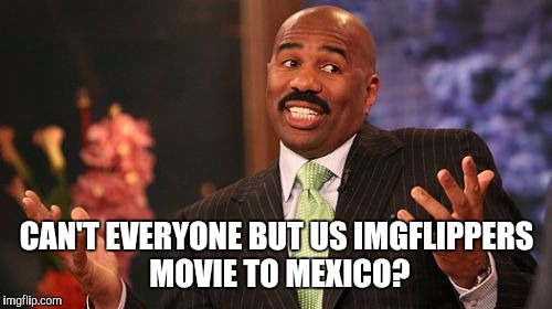 Steve Harvey Meme | CAN'T EVERYONE BUT US IMGFLIPPERS MOVIE TO MEXICO? | image tagged in memes,steve harvey | made w/ Imgflip meme maker