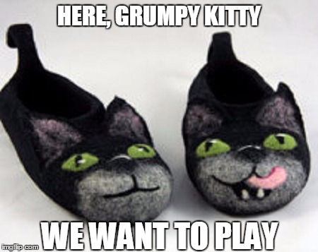 HERE, GRUMPY KITTY WE WANT TO PLAY | made w/ Imgflip meme maker