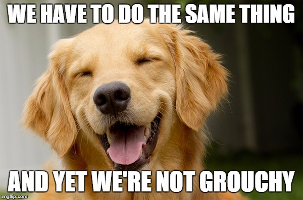 WE HAVE TO DO THE SAME THING AND YET WE'RE NOT GROUCHY | made w/ Imgflip meme maker