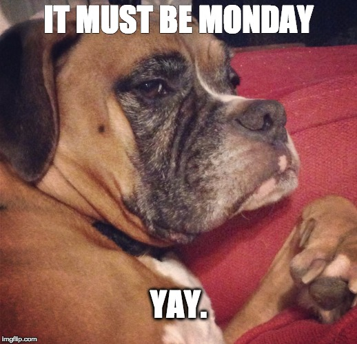 It Must Be Monday Yay Imgflip The best memes from instagram, facebook, vine, and twitter about yay. it must be monday yay imgflip