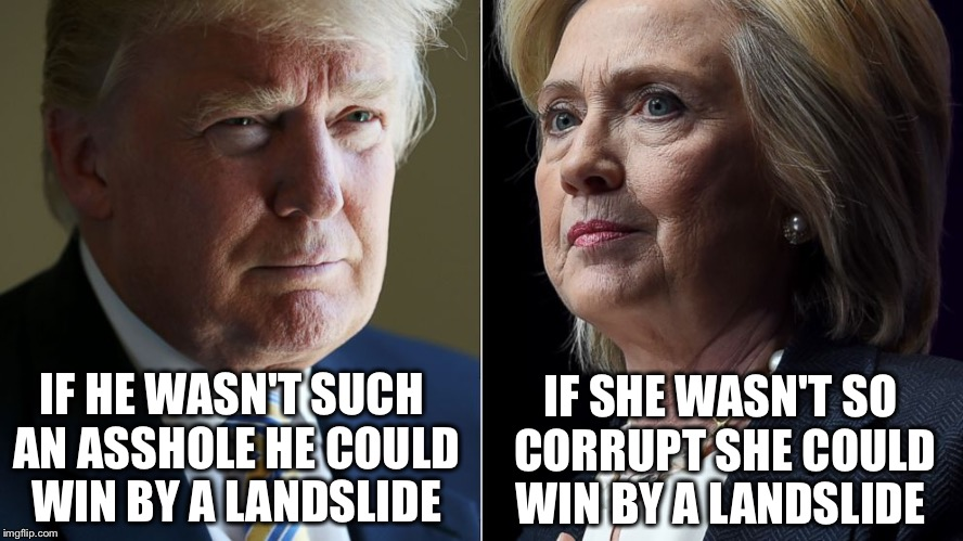 They deserve each other...but we don't! | IF HE WASN'T SUCH AN ASSHOLE HE COULD WIN BY A LANDSLIDE IF SHE WASN'T SO CORRUPT SHE COULD WIN BY A LANDSLIDE | image tagged in trump hillary,memes,election 2016,trump,hillary | made w/ Imgflip meme maker