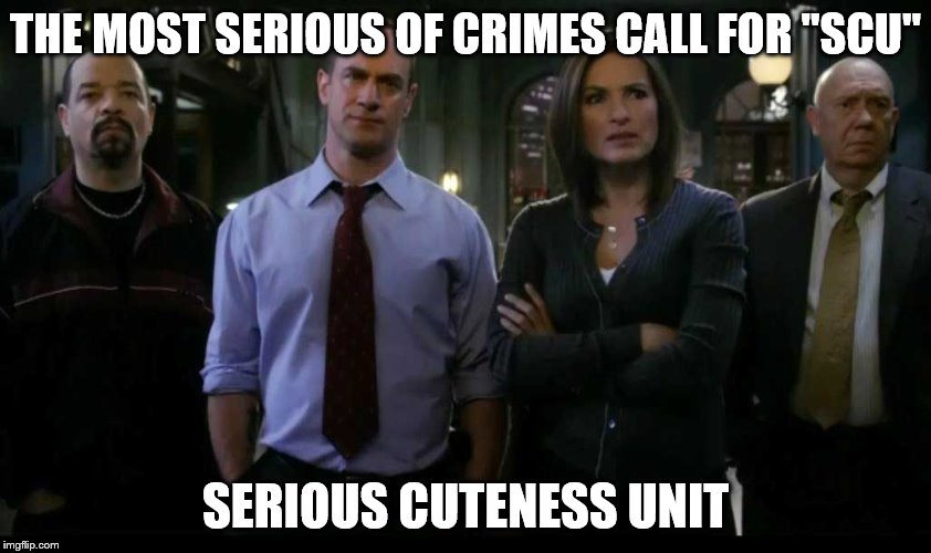 "THE MOST SERIOUS OF CRIMES CALL FOR ""SCU"" SERIOUS CUTENESS UNIT 