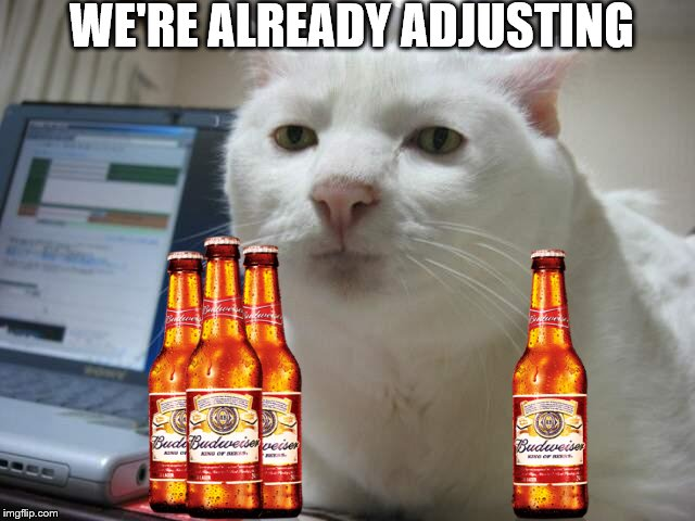 WE'RE ALREADY ADJUSTING | made w/ Imgflip meme maker