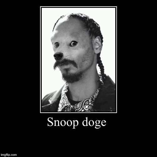 Snoop doge | | image tagged in funny,demotivationals | made w/ Imgflip demotivational maker