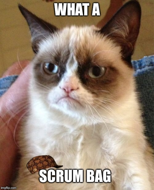 Grumpy Cat Meme | WHAT A SCRUM BAG | image tagged in memes,grumpy cat,scumbag | made w/ Imgflip meme maker