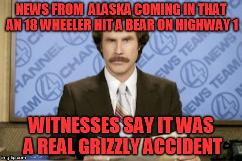 Ron Burgundy Meme | NEWS FROM  ALASKA COMING IN THAT AN 18 WHEELER HIT A BEAR ON HIGHWAY 1 WITNESSES SAY IT WAS A REAL GRIZZLY ACCIDENT | image tagged in memes,ron burgundy | made w/ Imgflip meme maker