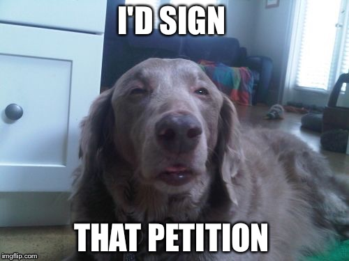 I'D SIGN THAT PETITION | made w/ Imgflip meme maker