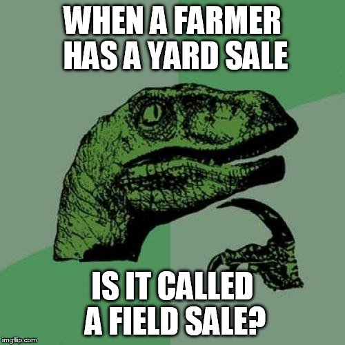 Philosoraptor Farmer's Yard Sale | WHEN A FARMER HAS A YARD SALE IS IT CALLED A FIELD SALE? | image tagged in memes,philosoraptor,farmer,yard sale | made w/ Imgflip meme maker