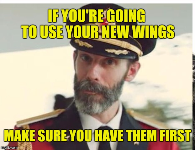 IF YOU'RE GOING TO USE YOUR NEW WINGS MAKE SURE YOU HAVE THEM FIRST | made w/ Imgflip meme maker