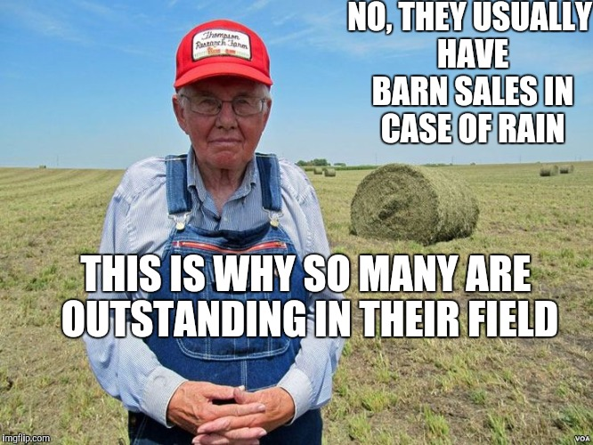 NO, THEY USUALLY HAVE BARN SALES IN CASE OF RAIN THIS IS WHY SO MANY ARE OUTSTANDING IN THEIR FIELD | made w/ Imgflip meme maker