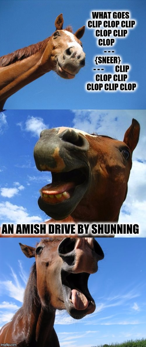 1a52bf amish imgflip