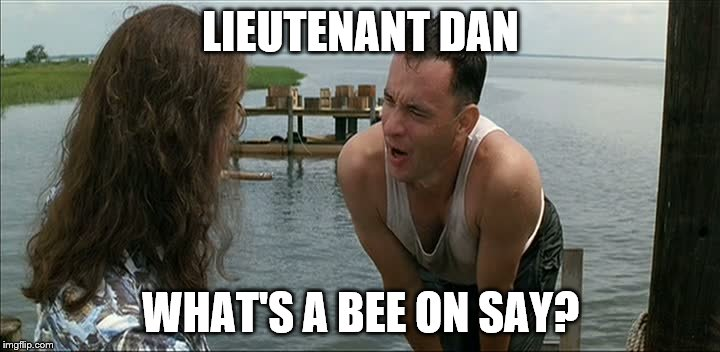 LIEUTENANT DAN WHAT'S A BEE ON SAY? | image tagged in lt dan | made w/ Imgflip meme maker