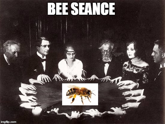 BEE SEANCE | made w/ Imgflip meme maker