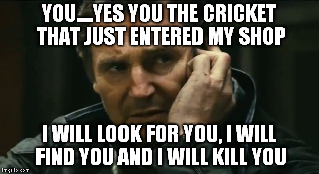 YOU....YES YOU THE CRICKET THAT JUST ENTERED MY SHOP I WILL LOOK FOR YOU, I WILL FIND YOU AND I WILL KILL YOU | image tagged in liam neeson,crickets,torture,make it stop | made w/ Imgflip meme maker