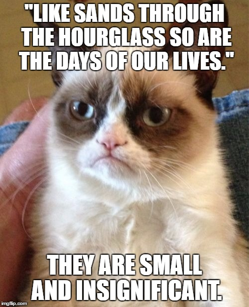 "Grumpy Cat Meme | ""LIKE SANDS THROUGH THE HOURGLASS SO ARE THE DAYS OF OUR LIVES."" THEY ARE SMALL AND INSIGNIFICANT. 
