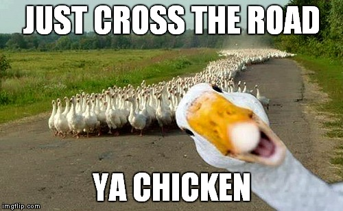 JUST CROSS THE ROAD YA CHICKEN | made w/ Imgflip meme maker