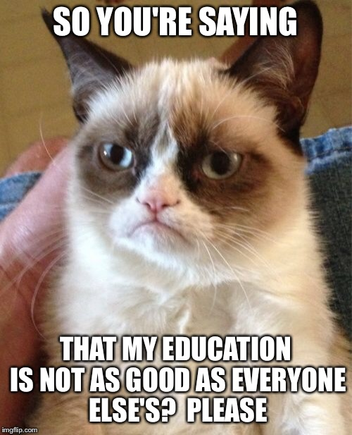 Grumpy Cat Meme | SO YOU'RE SAYING THAT MY EDUCATION IS NOT AS GOOD AS EVERYONE ELSE'S?  PLEASE | image tagged in memes,grumpy cat | made w/ Imgflip meme maker