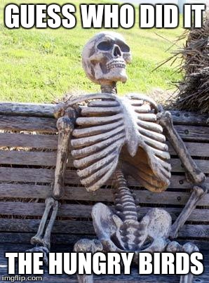 Waiting Skeleton Meme | GUESS WHO DID IT THE HUNGRY BIRDS | image tagged in memes,waiting skeleton | made w/ Imgflip meme maker