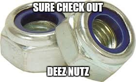 SURE CHECK OUT DEEZ NUTZ | made w/ Imgflip meme maker