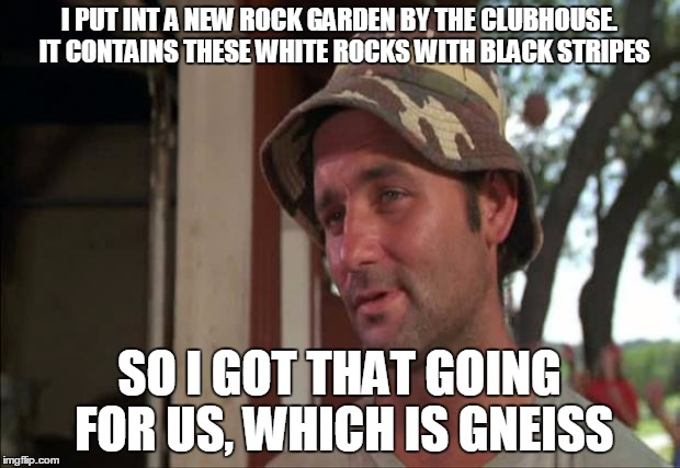 So I Got That Goin For Me Which Is Nice 2 |  I PUT INT A NEW ROCK GARDEN BY THE CLUBHOUSE.  IT CONTAINS THESE WHITE ROCKS WITH BLACK STRIPES; SO I GOT THAT GOING FOR US, WHICH IS GNEISS | image tagged in memes,so i got that goin for me which is nice 2 | made w/ Imgflip meme maker