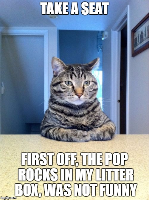 Take A Seat Cat Meme | TAKE A SEAT FIRST OFF, THE POP ROCKS IN MY LITTER BOX, WAS NOT FUNNY | image tagged in memes,take a seat cat | made w/ Imgflip meme maker