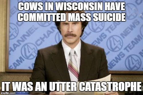 Cow Cult | COWS IN WISCONSIN HAVE COMMITTED MASS SUICIDE IT WAS AN UTTER CATASTROPHE | image tagged in memes,ron burgundy | made w/ Imgflip meme maker